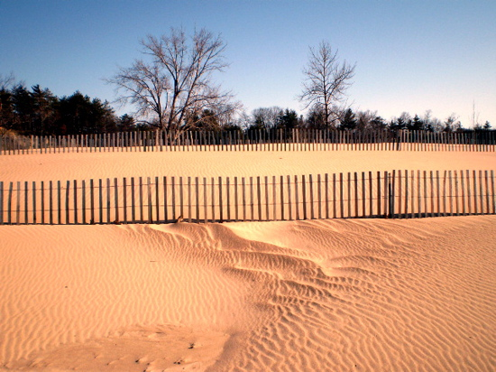 Photo of Indiana Dunes by Luis Jimenez-Ridruejo